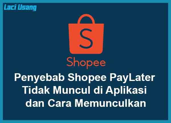 Kenapa Shopee PayLater Tidak Muncul di Aplikasi